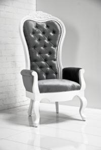 Riviera Wing Chair in Charcoal Velvet