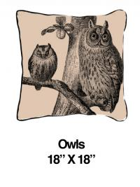 Owls Black Oatmeal